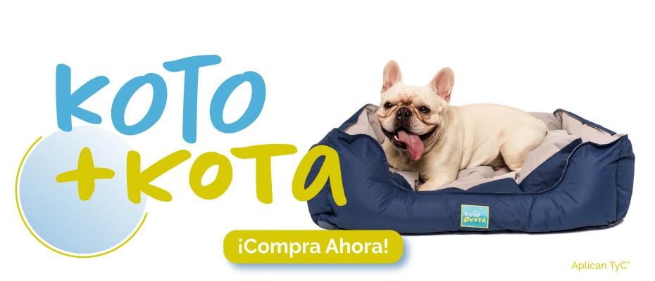 koto-mascotas